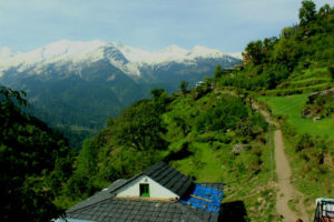 Seven Quick Tips Regarding Tosh Himachal | Trendy India
