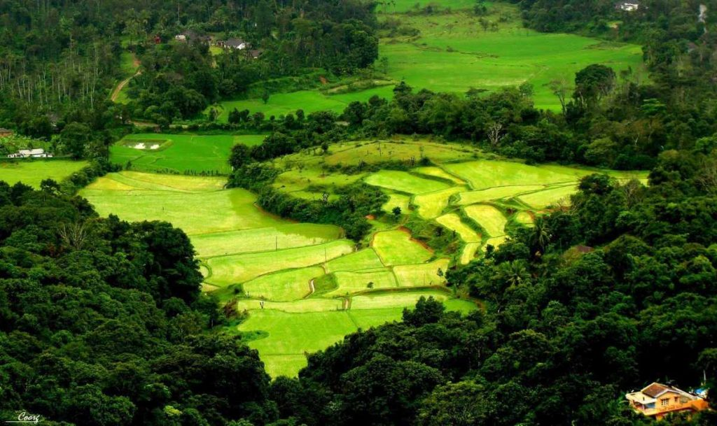 Best place to visit in July in India Coorg